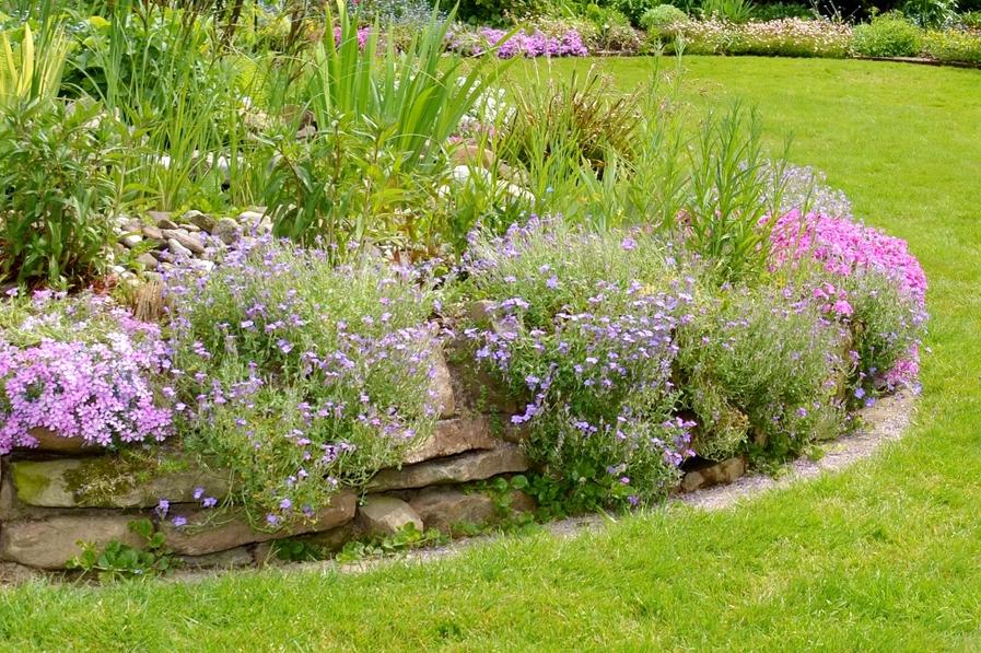 Natuurlijke tuin foto