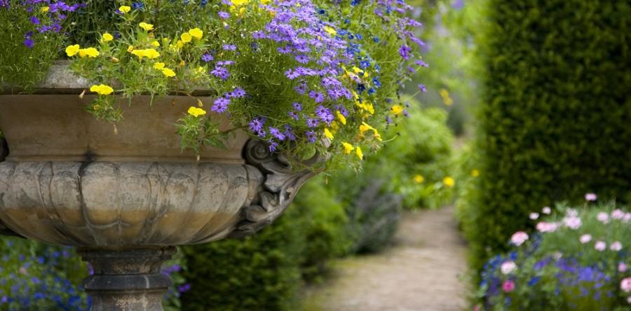 Nostalgische tuin